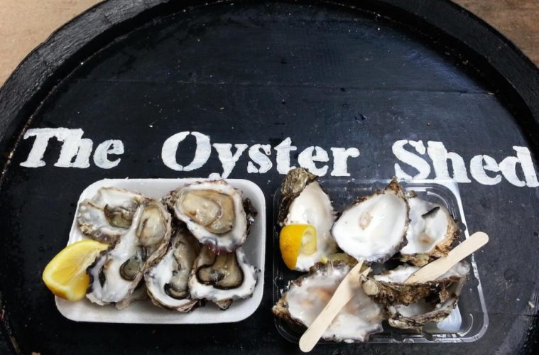 the-oyster-shed-1024x683