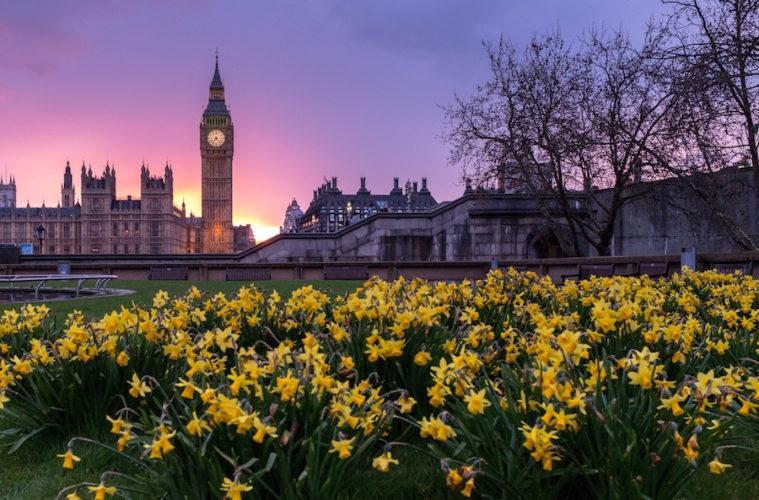 Londonandburialplots