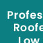 Roofing contractor in beckenham